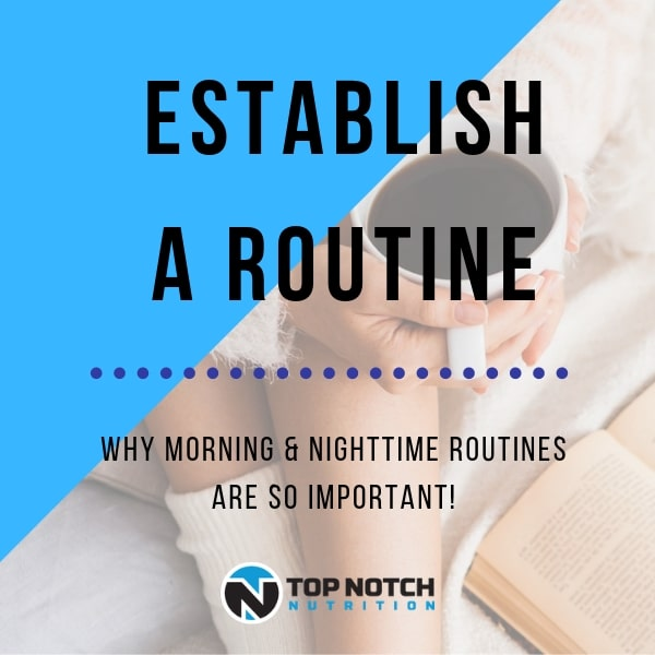 Establish A Routine